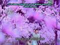 Chinese Paladin ep01/34 (English Subtitle)