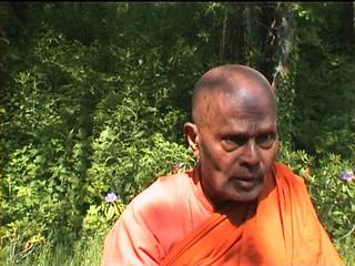 Bhante Gunaratana (6) What is right effort?