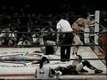 Double Inoue vs Manami Toyota & Sakie Hasegawa, 2/3 falls, AJW 8/30/95