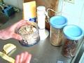 Power breakfast recipe