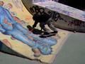 bertslide skate velaux davy