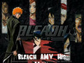 Bleach AMV: His World
