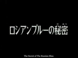 Detektiv Conan 445 - The Secret of Russian Blue