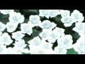 Kigeki(Comedy) -English-