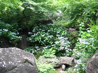 六本木ヒルズ 毛利庭園 3