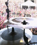 Evanescence - Live At Pinkpop 2003.mpg