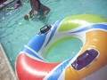 My Pool Party pt.2