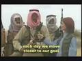 Subtitles vid