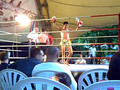 Ibo Barakat Muay Thai official result