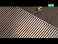 MayBee-DaSo MV