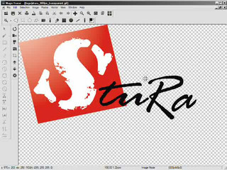 Logo Vectorized in MagicTracer