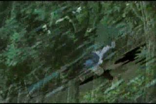 Princess Mononoke - Disturbed - The Game