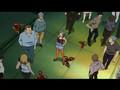 Red Garden Trailer