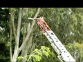 Firefighers from the San Francisco Fire Department on The Battalion-The Series- Webisode #19-Rescue Squad