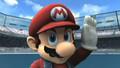Super Smash Bros.Brawl:Subspace Emissary