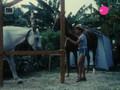 Sto Camping 6 (1o Meros)