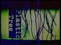 Plastic Tree - Wareta Mado