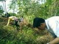 DYAB Cebu Kapamilya Tree Planting