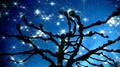 Eine kleine Nachtmusik (Wolfgang Amadeus Mozart)