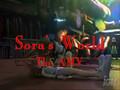 Sora's World
