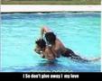 Akame fanvideo - My Love