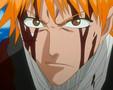 Bleach AMV Ichirin no Hana (Vocal Version)