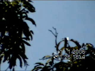 UFO - Mothership - Vertical Gravity Stretch with Orbs - Mexico