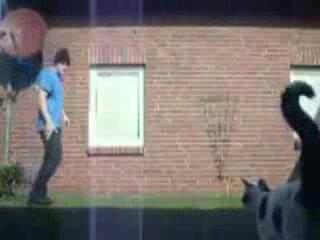 Breakdancing Cat Flip Accident