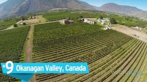 Top 10 Wine Cities